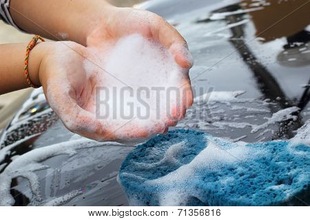 Blue Sponge  The Car For Washing
