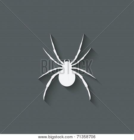 spider design element