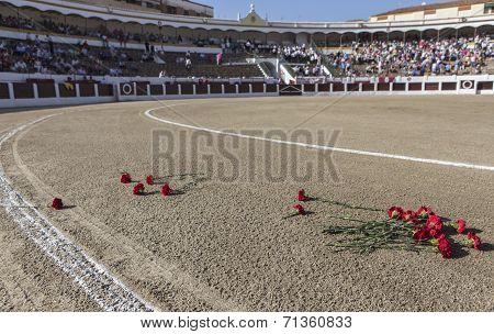 Exact Place Where He Died Manuel Rodriguez Sanchez