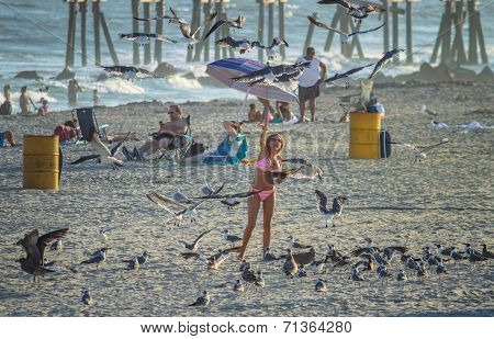Lady Feeds The Seagulls
