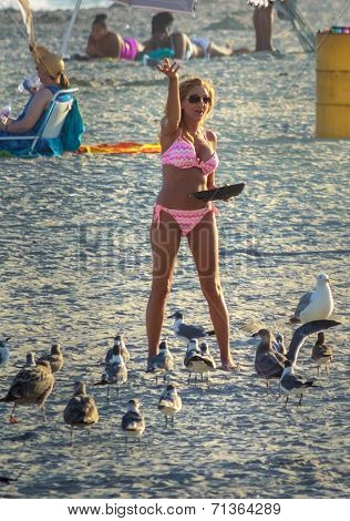 Bikini Feeding