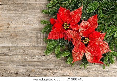 Christmas Tree Branch With Poinsettia On Wooden Background