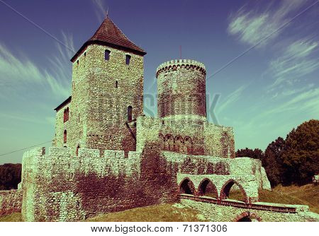 Castle In Poland