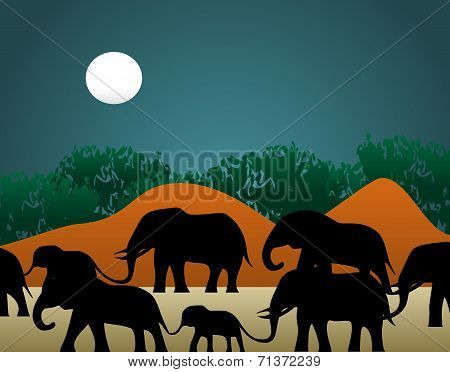 Elephant Family Illustration