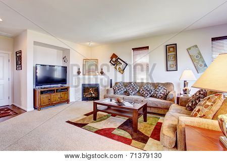 White Living Room With Fireplace And Colorful Rug