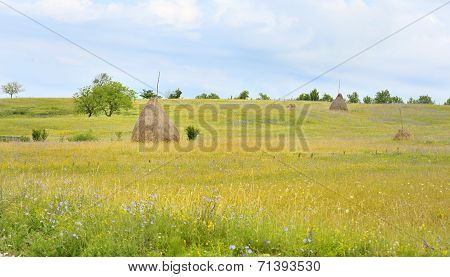 A Stack Of Hay In Maramure?, Romania