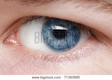 Blue Eye Of Young Man