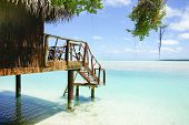 image of pacific islands  - Tropical cabin over waters edge - JPG