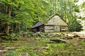 image of gatlinburg  - Historical log barn surrounded by a beautiful meadow and woods - JPG