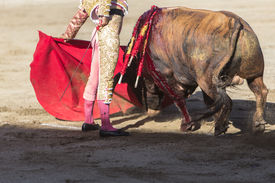 image of bullfighting  - Bullfighter bullfighting with the crutch in the Bullring of Baeza Jaen province Andalusia Spain - JPG