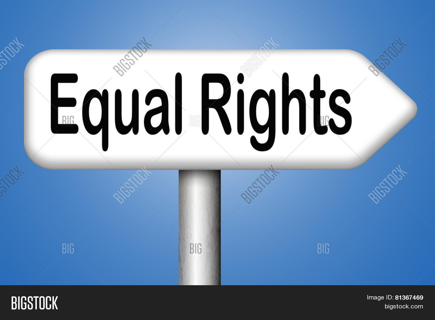 rights of equality The fundamental rights are guaranteed to protect the basic human rights of all citizens of india and are put into effect by the courts, subject to some limitations one of such fundamental rights is the right to equality right to equality refers to the equality in the eyes of law, discarding any.