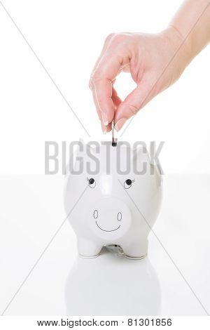 Savings Balance