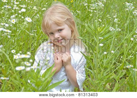 little blond girl in wild daisies