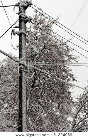 post during a snowfall