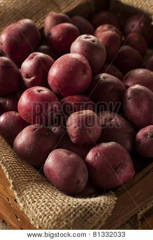 Organic Raw Red Potatoes