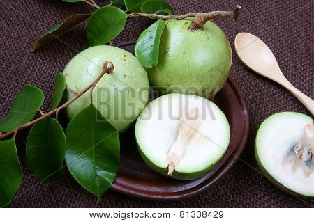 Vietnam Farm Product, Milk Fruit, Star Apple