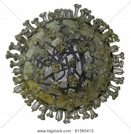 Realistic Model Of Flu Virus