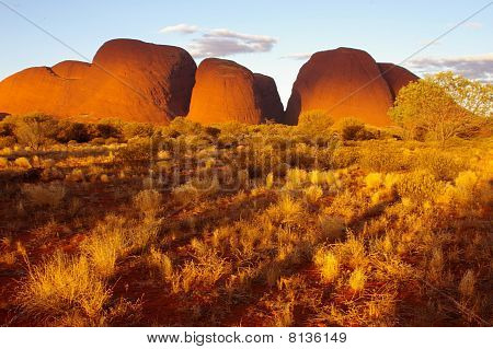 Olgas View National Park, Northern Territory, Australia 1