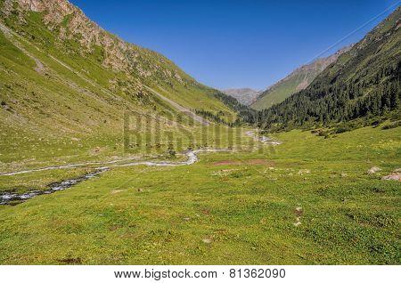 Green Tien-shan In Kyrgyzstan