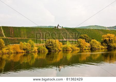 Chappel At The Vineyard Near Trittenheim At The River Mosel