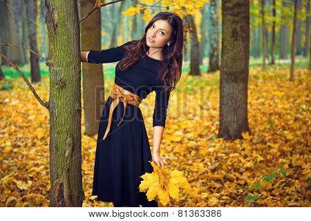 Autumn portrait of a beautiful girl.