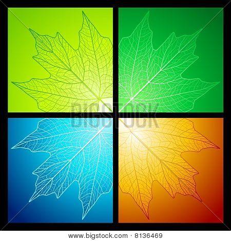 Maple leaf corners