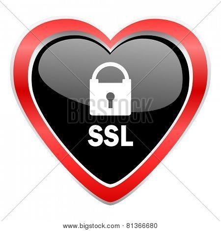 ssl icon