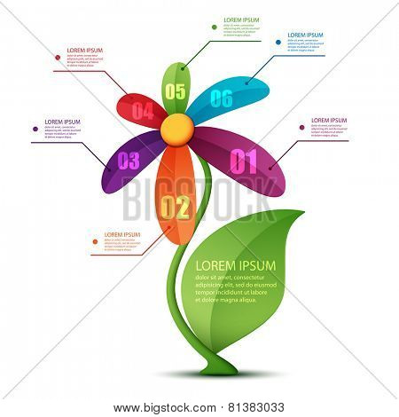 Vector illustration of floral infographics