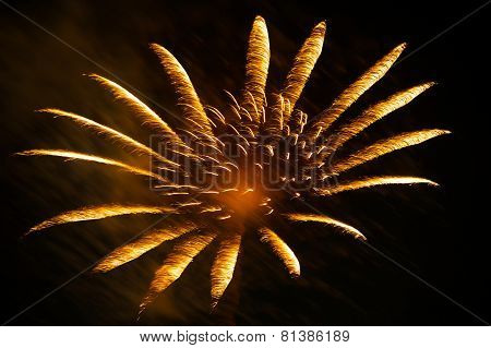New Year's fireworks