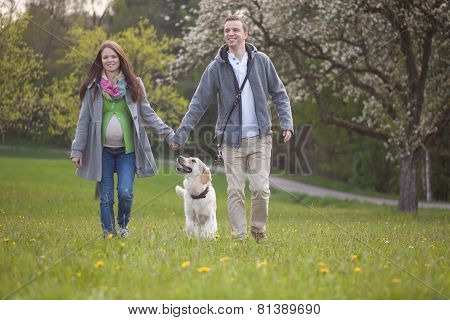 Parents To Be  With Dog Enjoying The Green