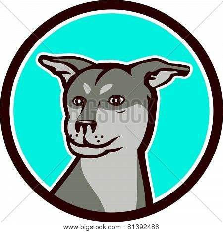 Husky Shar Pei Cross Dog Head Cartoon