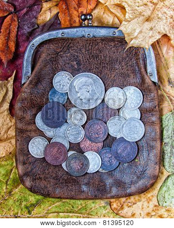 Purse With Coins