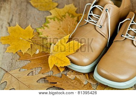 pair of beige leather shoes and yellow leaves on an old wooden floor