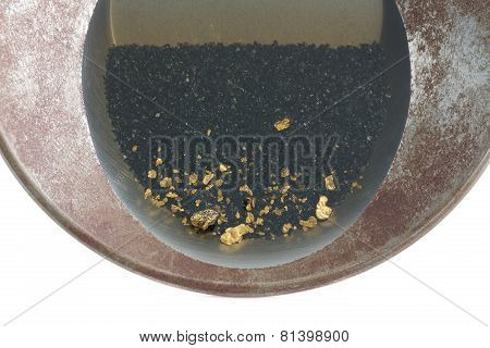 Gold Pan Filled With Natural Placer Gold
