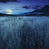 foto of moon-flower  - composite mountain summer landscape - JPG