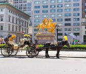 picture of carriage horse  - Central Park horse carriage rides in Manhattan New York US - JPG