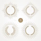 stock photo of laurel  - Vector set of laurel wreath with sunburst line rays - JPG