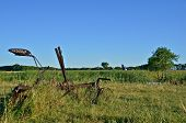 picture of horse plowing  - A very old steel plow with is left in the field with grass growing  and a corn field and slough in the background - JPG