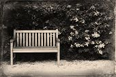 foto of bench  - Bench in the park - JPG