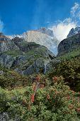������, ������: Torres Del Paine