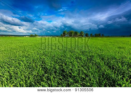 Green meadow and stormy sky