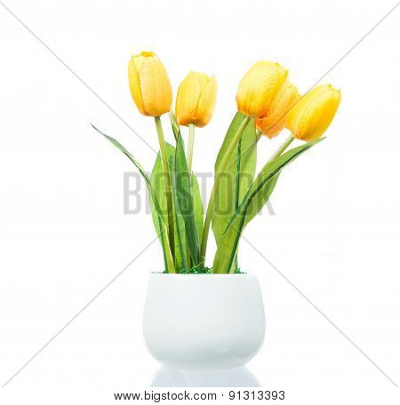 Yellow Tulips In Brown Pot Isolated