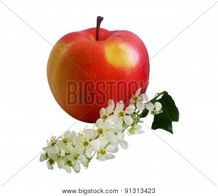 Red Apple And Flowers