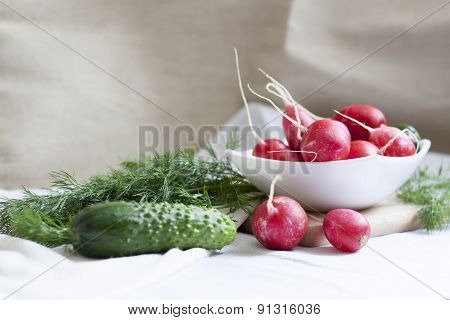 Cucumbers, radishes and herbs