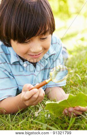 Boy examining leaf