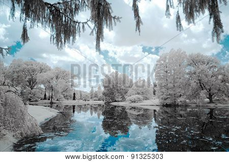 Landscape forest and the lake, infrared photo.