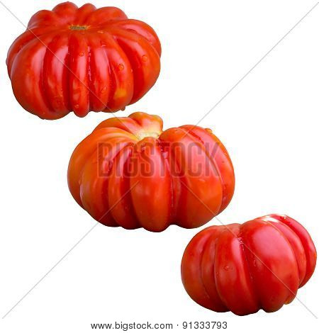 Tomato Ripe.