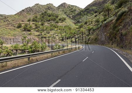 Country road on Gomera island, Spain