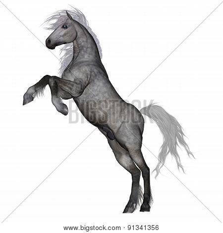 White horse rearing - 3D render