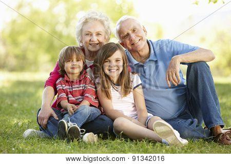 Senior couple and grandchildren in park